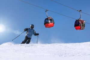 Salomon x North Strong Aluminum Ski Poles